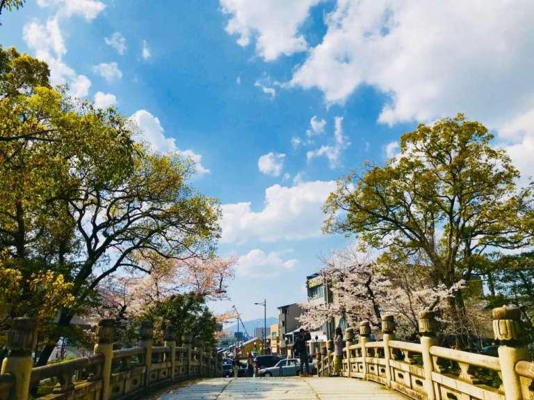 絶好のお花見スポット『大谷本廟』