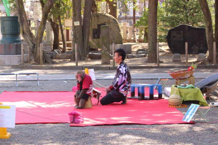浅草神社境内の猿まわし
