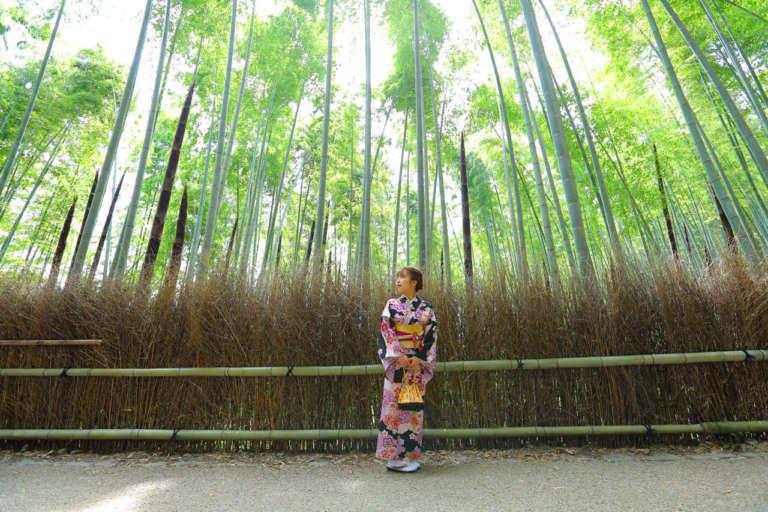 涼やかな竹林を通り抜けて嵐山を観光 竹林の小径