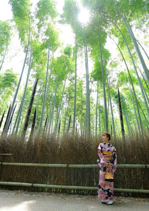 竹林で着物姿の女性