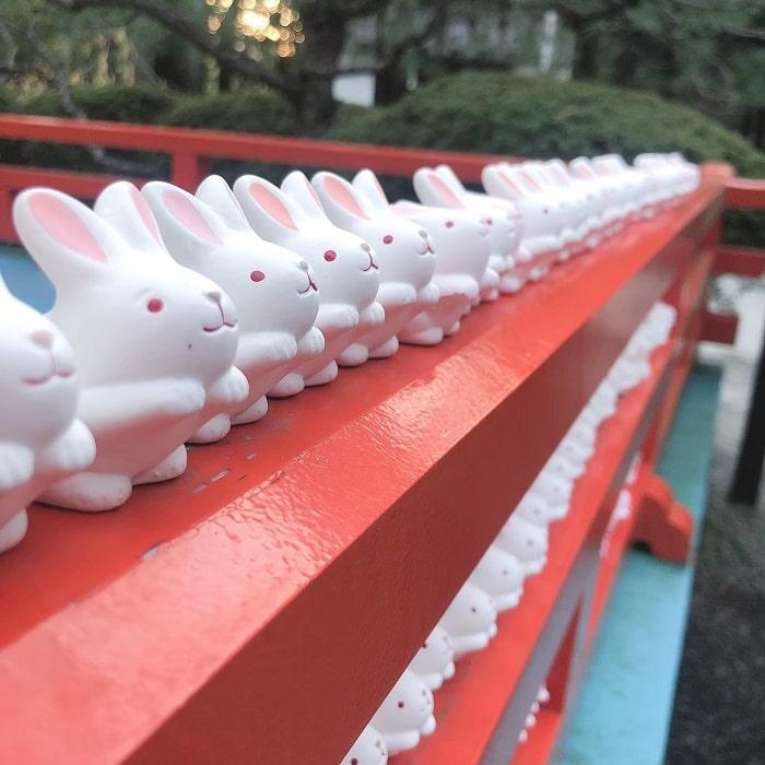 岡崎神社並ぶうさぎ