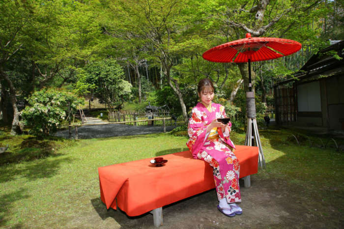 着物姿でお抹茶と和菓子をいただいている様子