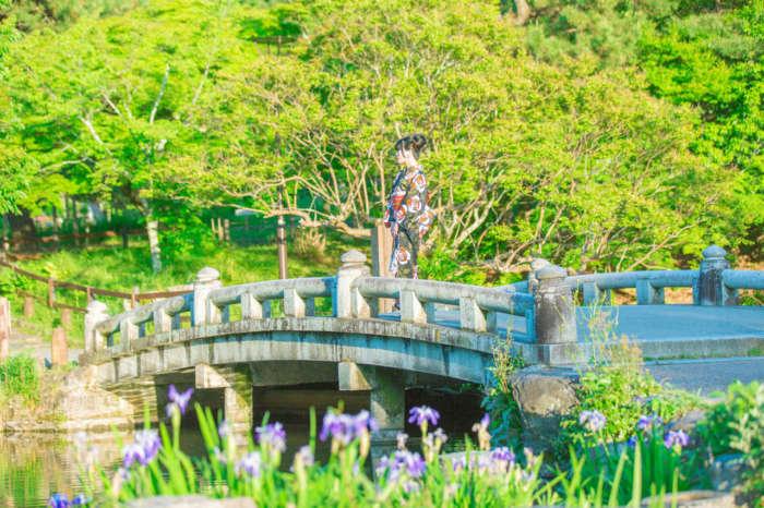 丸山公園の橋の上に立つ着物姿の女性