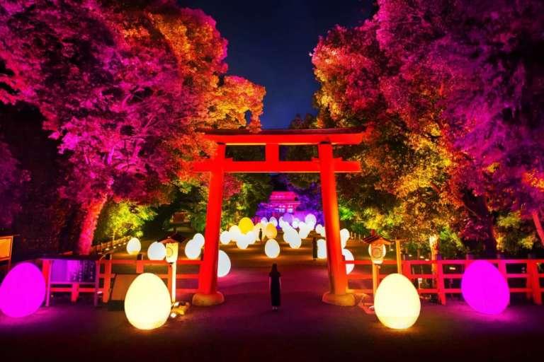 下鴨神社 糺の森の光の祭 チームラボ