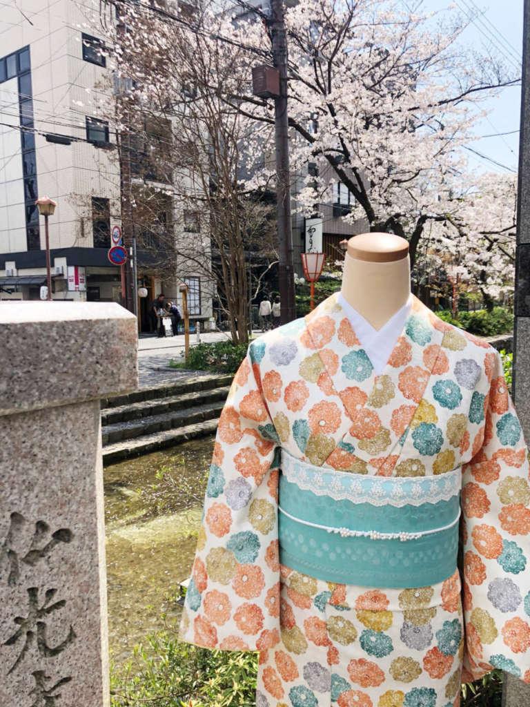 高瀬川の横からお届けします♪ 爽やかな春らしい着物コーディネート