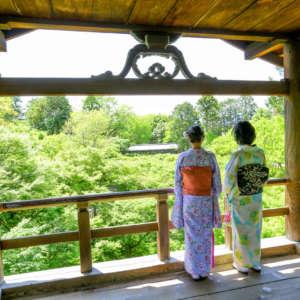 東福寺通天橋から着物姿で青モミジを眺める様子