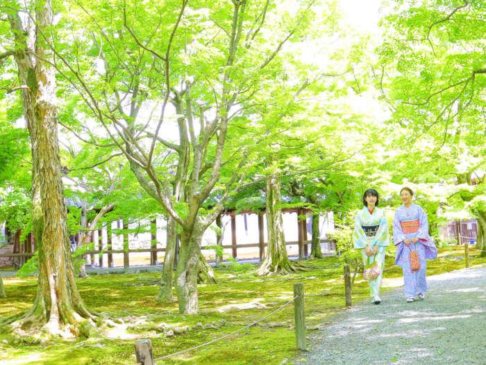 東福寺境内を歩く着物姿の女性