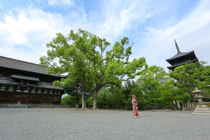 東寺金堂前に立つ着物姿の女性