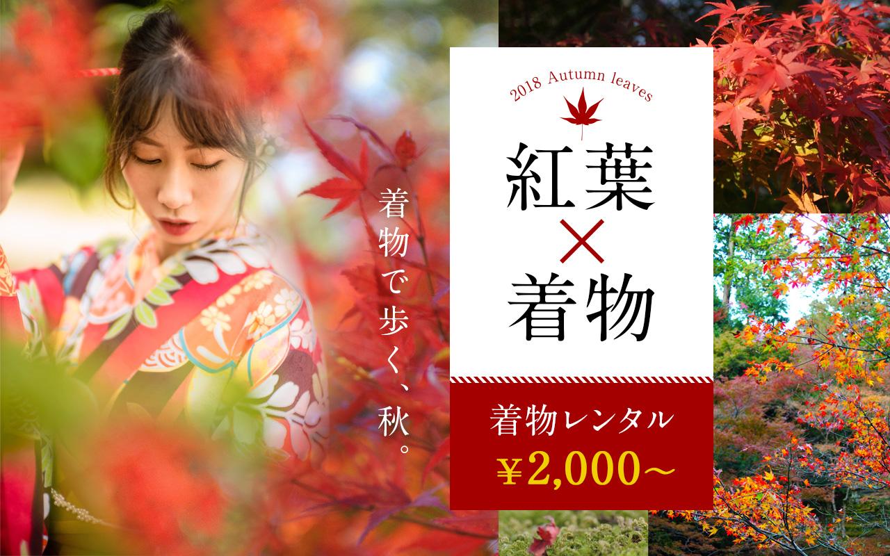 紅葉や秋の観光は着物で!